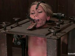 Ariel gets restrained in a BDSM machine and humiliated
