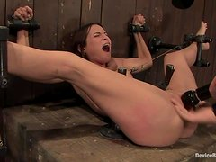 Amber Rayne gets her ass pounded with a big toy while in fetters