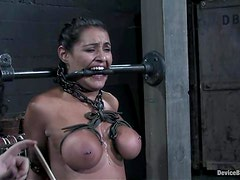 Charley Chase undergoes some hot tortures in a basement