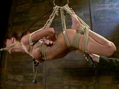Tied up Gia Dimarco gets tortured and toyed in both holes