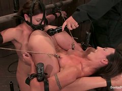 Two restrained brunettes get toyed and humiliated