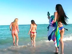 Playful curvy sluts having fun on hot summer beach