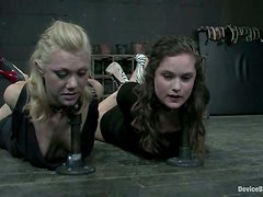 Two sexy girls are getting blindfolded and tortured