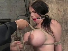 Huge tittied Daphne Rosen gets toyed and wrapped