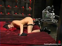 Alexis Duval gets her ass and vag pounded by a fucking machine