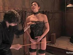 Slutty Satine Phoenix gets whipped and pounded