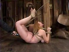 BDSM fantasies with a kinky babe Darling