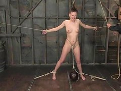 Desirable sex doll is going to love some insanity of BDSM