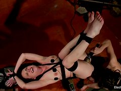 Bobbi Starr wires Katie and fucks her with a strapon