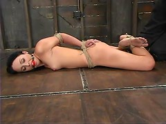 Bound Alexa Von Tess gets her tits tortured in BDSM video