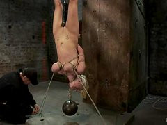Tied up Haley Cummings hangs upside down and gets toyed