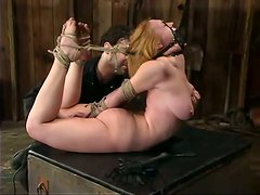 Naughty chick Darling gets hogtied and spanked