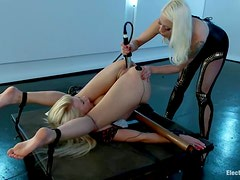 Two luscious blond babes are making some BDSM love