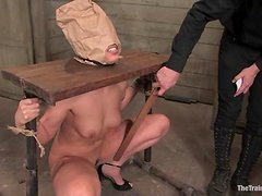 Gorgeous blondie is being fucked in bondage