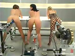 Three naughty bitches are being fucked by some machines