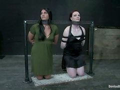 Wicked Bondage and Crazy Domination for Sarah Jane Ceylon and Claire Adams