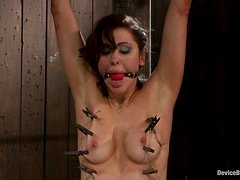 Princess Donna Dolore gets tormented in a cellar and enjoys it