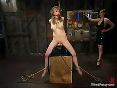 Tattooed blond slave is under the perversions of Jessie