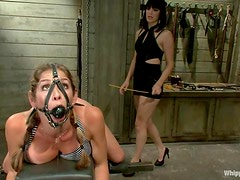 Luscious and kinky bitch is living some BDSM hell