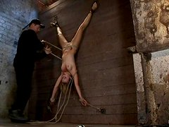 Bound Mae Meyers hangs upside down and sucks a dick