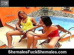 Carla&Patricia gorgeous trannies in action