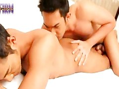 FIRM SPECIAL 4 PART 2