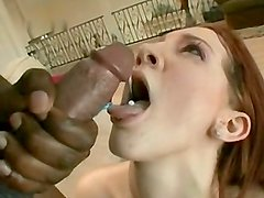 Compilation swallow 12