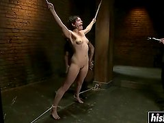 Hot babe gets tied up and pleasured