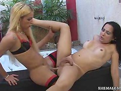 Two Hot Blonde and Brunette Shemales Fucking and Sucking Each Other