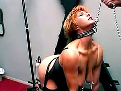 His sexy pet bound in the dungeon