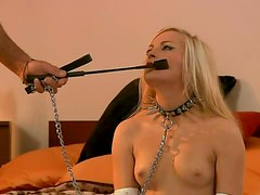Stunning Blonde Nicky Angel Plays The Human Puppy In This BDSM Vid