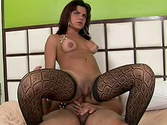 Aggressive tranny Yuri Gatti in black pantyhose is eating fresh sperm after anal interaction