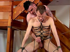 Gay bondage and anal porn