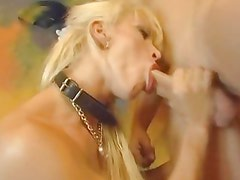 Raunchy Cony Ferrara stuffs her mouth with hard cock