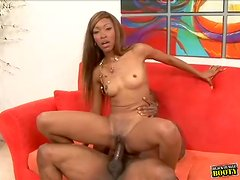 Wet black cunt plowed by ebony shaft