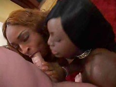 Two black babes suck on this big white cock