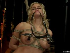 Janny the tied up sex slave gets toyed in her tight ass