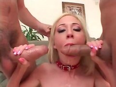 Girl in cute collar fucked in all holes in threesome