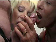Two mature blondes are sharing this dude's thick dick