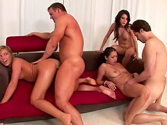 Sensual babes is sucking and fucking in the group scene