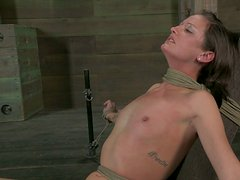 Titless tied up slut Hailey Young has to give a solid deepthroat