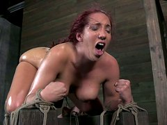Humiliating time for a voluptuous redhead slave chick Kelly Divine