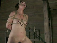 Sweaty moaning slave Sarah Shevon gets attached to some wooden stuff