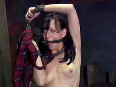 Lewd brunette hoe Elise Graves pisses on the floor all chained