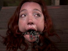 Pillory punishment for chubby redhead babe Maggie Mead