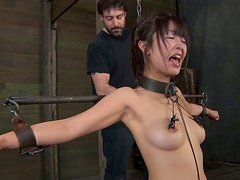Asian brunette tramp Marica Hase gets her nipples pinned