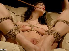 Beautiful Ann Marie La Sante gets pounded in BDSM video