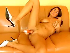 Curvy solo European on couch toys