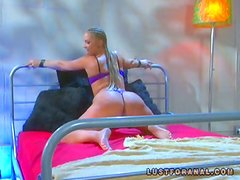 Stunning Flower Tucci gets ass fucked doggystyle