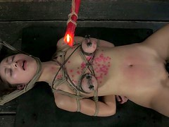 Poor chick Marica Hase has to undergo some wax session